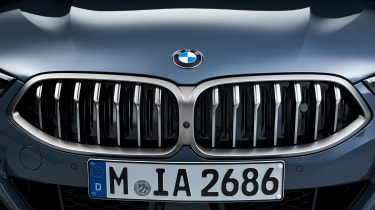 BMW 8 Series - grille