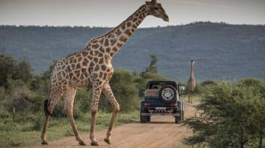 Mercedes-Maybach G 650 Landaulet - giraffe
