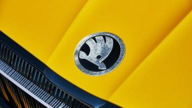 Skoda Vision iV concept - Skoda badge