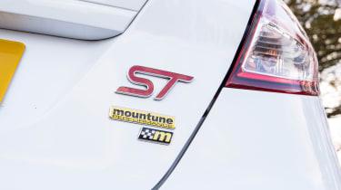 Ford Fiesta ST Mountune 230 - badge