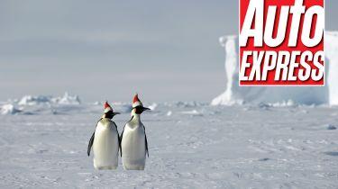 Xmas quiz penguins