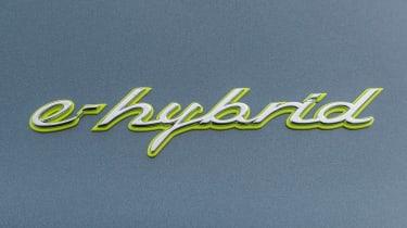 Porsche Cayenne E-Hybrid - badge