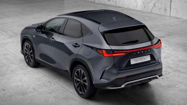 Lexus NX - grey rear