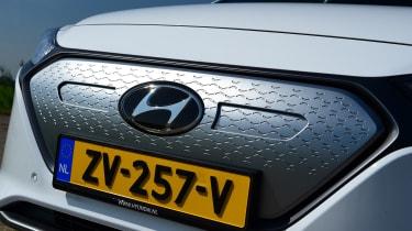Hyundai Ioniq Electric - grille