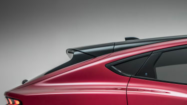 Ford Mustang Mach-E - roof