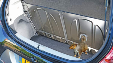 Toyota Aygo boot squirrel