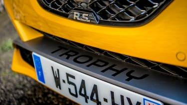 Renault Megane RS 300 Trophy - splitter
