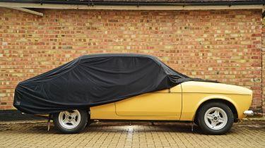 Cosmos indoor car cover