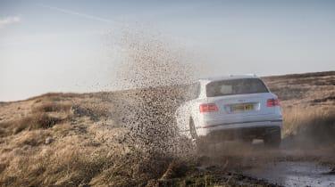 Bentley Bentayga Diesel - Ice white 2017 off-road rear
