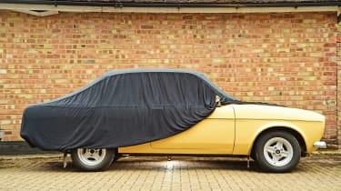 Hibernation feature - car cover