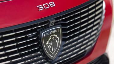Peugeot 308 SW - grille