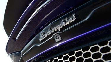 Lamborghini Aventador SVJ - Lamborghini badge
