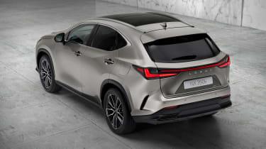 Lexus NX - silver rear static