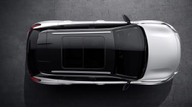 Peugeot 3008 white roof