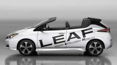 Nissan Leaf Open Air - side