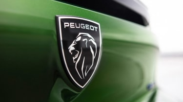Peugeot 308 - rear badge