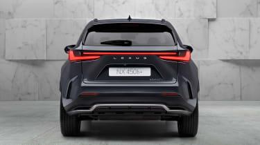 Lexus NX - full rear