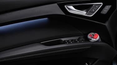 Audi Q4 e-tron - door