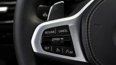 BMW 8 Series - steering wheel detail