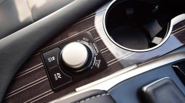 Lexus RX L - interior detail