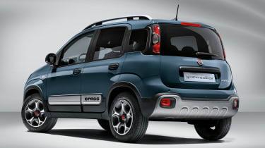 Panda Cross 2021 rear view