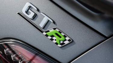 Mercedes-AMG GT R Pro - badge