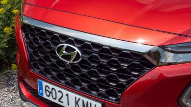 Hyundai Santa Fe - grille