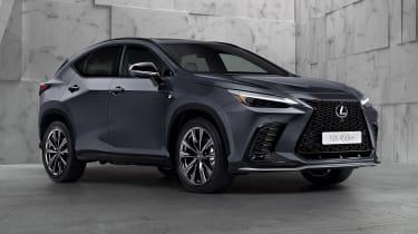 Lexus NX - grey front