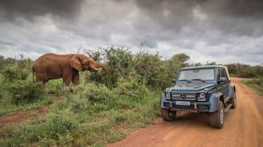 Mercedes-Maybach G 650 Landaulet - elephant