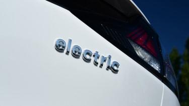 hyundai Ioniq electric - badge