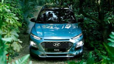 Hyundai Kona - jungle