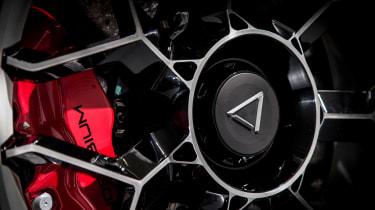 Vanda Dendrobium electric hypercar - wheel