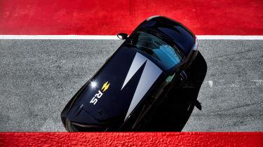 Renault Clio R.S.18 - roof