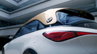 Smart SUV concept - rear detail