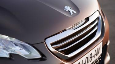 Peugeot 2008 1.6 VTi grille