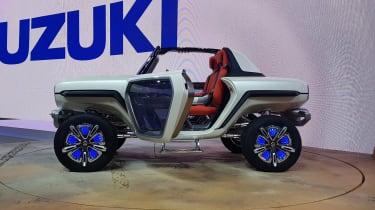 Suzuki e-Survivor side