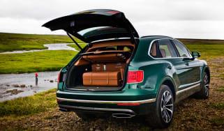Bentley Mulliner Fishing kit rear