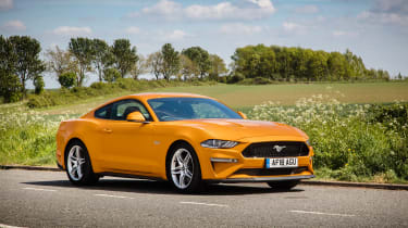 Ford Mustang V8 - front static