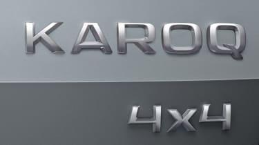Skoda Karoq badge