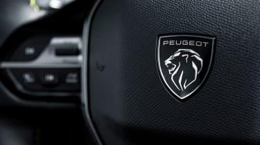 Peugeot 308 - steering wheel detail