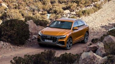 Audi Q8 - off-road action
