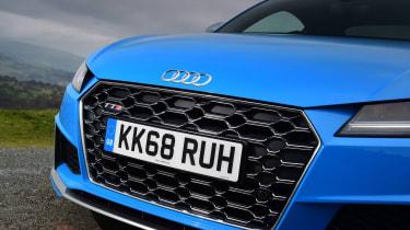Audi TTS - grille
