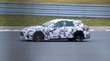 Ferrari Purosangue - side