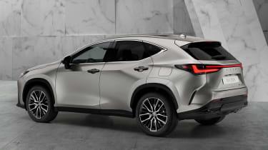 Lexus NX - silver rear