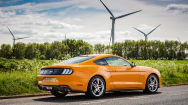 Ford Mustang V8 - rear static